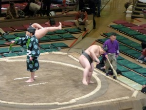 Sumo in Tokio - door Darcy Maris