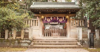 Nezu Shrine (Nezu Jinja) | Photography Francisca Hagen (November 2018)